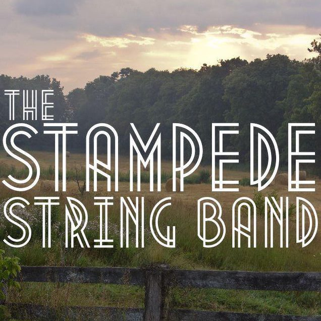The Stampede String Band